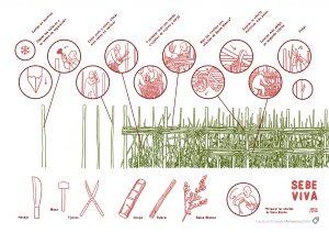 sebe viva, sebe, fundación cerezales, como hacer, javi de castro