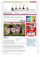 Prensa_2017_05_11_Leon vuelve a rendirse al carea leones – Provincia – Diario de Leon