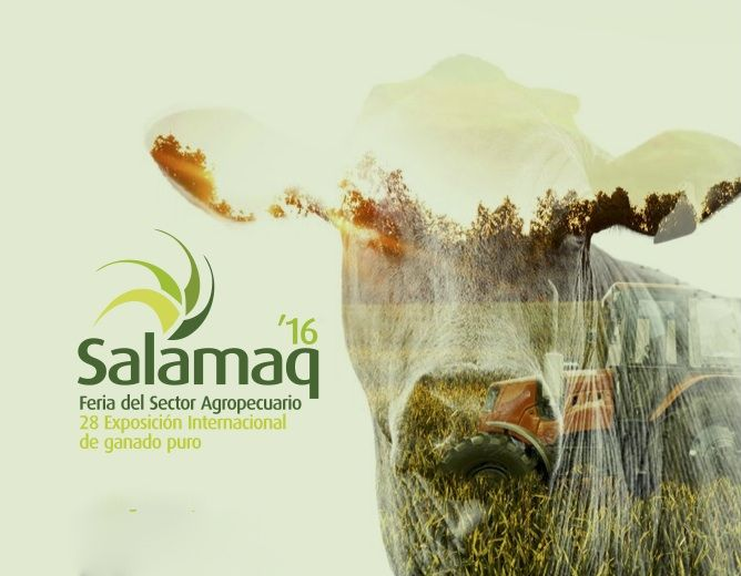 folleto-Salamaq16 blog fcayc_3